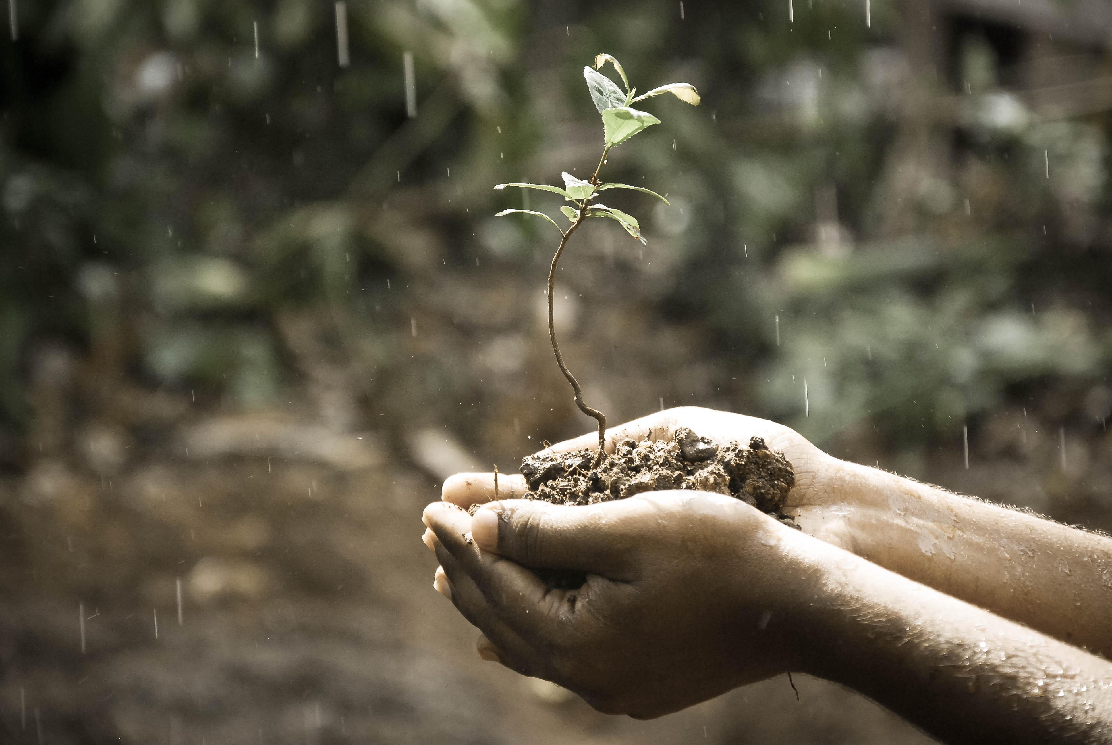 Eco-Friendly ALPOLIC Product Transparency Declarations