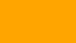 YLW Yellow